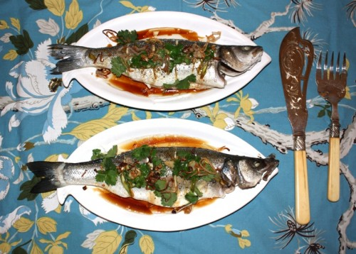 Branzino Fish Safe During Pregnancy